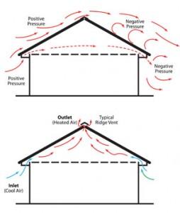 Pigeon Loft Ventilation