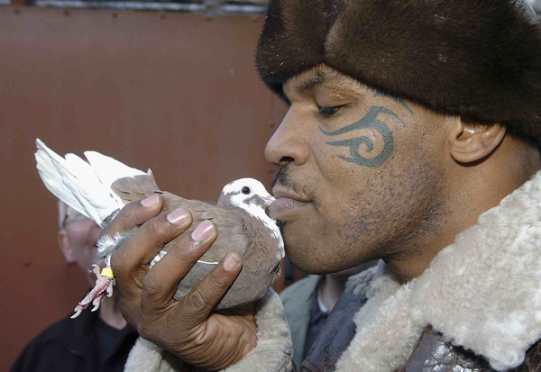 Mike Tyson Pigeon Show
