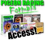 Pigeon racing formula access!