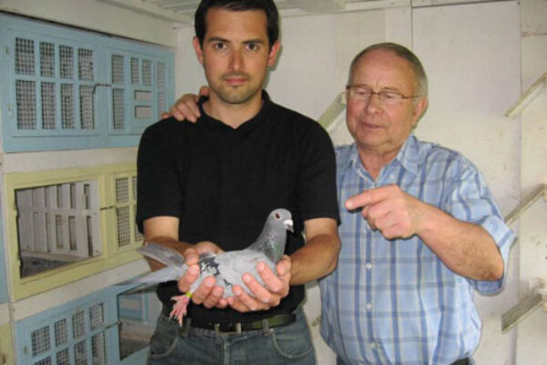 Pigeon Racing Partnerships: the good, the bad, the just plain ugly!