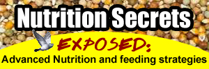 Nutrition secrets exposed: advanced nutrition and feeding strategies