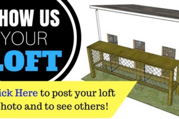 Show Us Your Loft